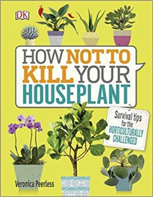How not to kill your houseplants