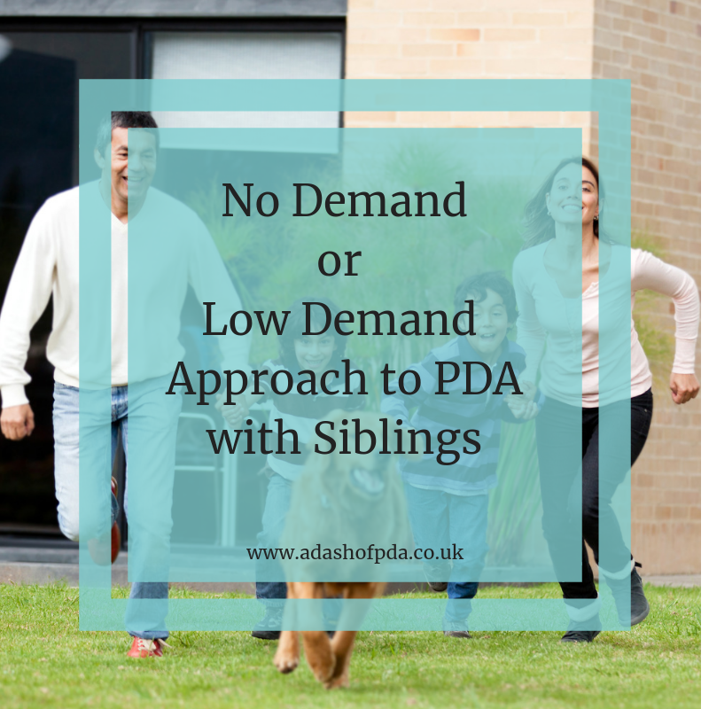 No Demand or Low Demand Approach to PDA with Siblings