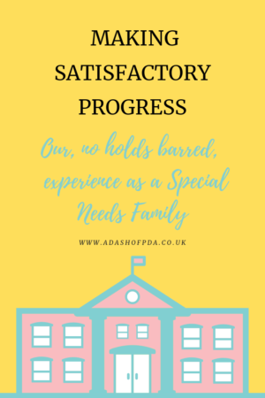 Making Satisfactory Progress - Our 'no holds barred' experience as a Special Needs Family by Rambling's of an Autism Mum